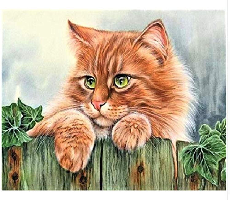 Superlucky Malerei schöne Katzen Bilder by Zahlen Zahlen Zahlen auf leinwand gerahmte wandbilder Kunst für Wohnzimmer Dekoration gerahmte 40x50 cm B07KJNZ37W | Leicht zu reinigende Oberfläche  0e9d24