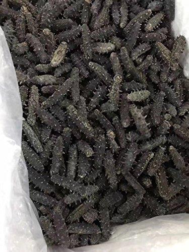 Tomox Dalian sea cucumber dry cargo 250g wild dried sea cucumber GanTomox Tang origin pure light infiltration sea cucumber