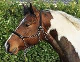 HKM Western Knotenhalfter, rund gepolstert an Nase und Genick, schwarz/beige, Vollblut