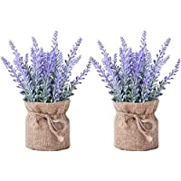 2-Pack Small Burlap Potted Lavender Flowers