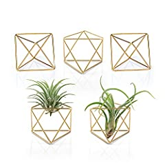 Himmeli Décor : Named from germanic word 'himmel' meaning sky or heaven. Adds modern flair and warm atmosphere to home. Note: The plants and props in the photos are not included Craftsmanship : Adorable ornaments with golden finish on the surface, lo...