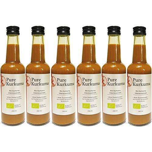 Pure Kurkuma – hochwertiger peruanischer Bio-Kurkuma Intensivextrakt ohne Zucker und künstliche Zusatzstoffe (6 x 250 ml)