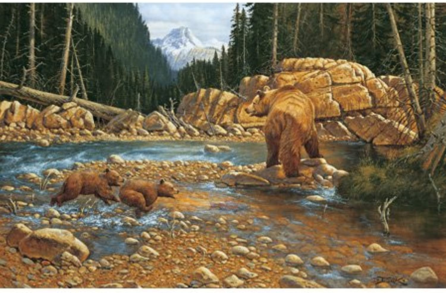 Finders Keepers 1000pc Jigsaw Puzzle by Derk Hansen