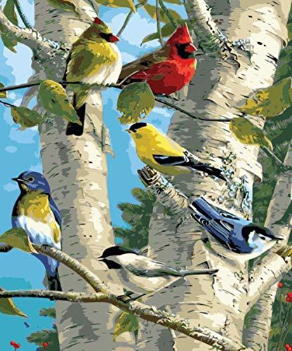 BVWSBGF DIY Vorgedruckt Leinwand-Ölgemälde Geschenk für Erwachsene Kinder Vogel Auf Pappel Malen Nach Zahlen Familienzimmer Wanddekoration 40x50 cm ohne Rahmen