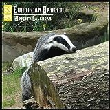 European Badger Calendar 2022: 18 Month Calendar European Badger, Square Calendar 2022, Cute Gift Idea For European Badger Lovers Women & Men, Size 8.5 x 8.5 Inch Monthly