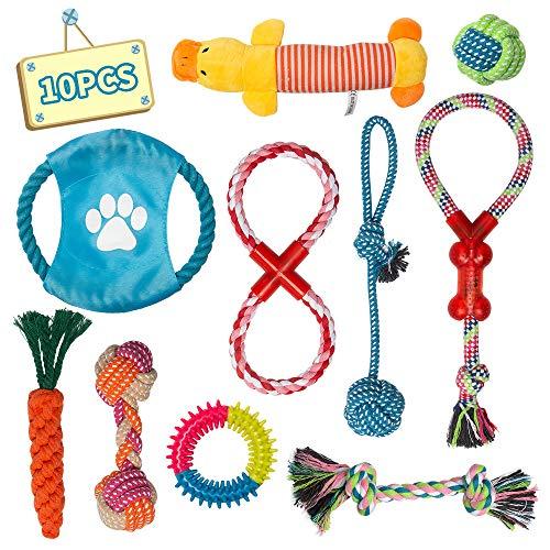 Labeol Hundespielzeug Hund Kauspielzeug Unzerstoerbar Interaktives Spielzeug 10pcs Pet Rope Spielzeug und Quietschende Hundespielzeug für Welpe Kleine Hunde