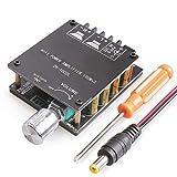 DAMGOO Bluetooth Amplifier Board, 100W+100W Peak Output Power, 2.0 Channel DC:8-24V, Password Free Connect, BT 5.0 AMP Board for DIY Wireless Speakers Board