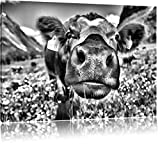 Pixxprint Alpen Kuh auf Bergwiese als Leinwandbild | Größe: 120x80 cm | Wandbild | Kunstdruck | fertig bespannt
