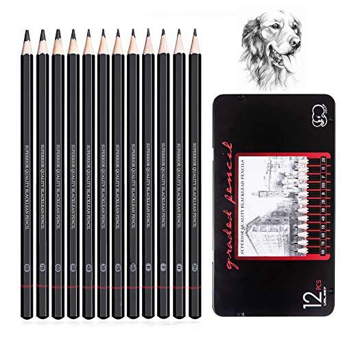 Matite da Disegno e Schizzi Professionali, Kit da 12 Matite di Grafite per Artista Principiante Studente Bambino Designer, Punte di Varia Durezza -8B 7B 6B 5B 4B 3B 2B B HB F H 2H
