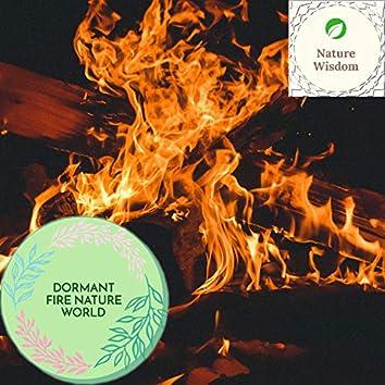 Dormant Fire Nature World