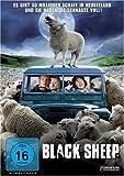 Black Sheep - Nathan Meister
