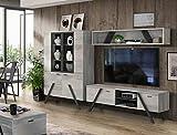 Wohnwand Golden State in Nordic Grey Oak und Schwarz mit Beleuchtung 3 teilig von Forte Anbauwand Wohnzimmer Mediawand TV- Wand