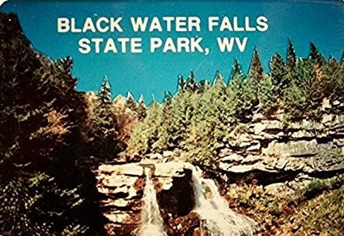 Blackwater Falls State Park WV Mini Postcard Magnet
