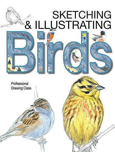 Sketching & Illustrating Birds: Professional Drawing Class