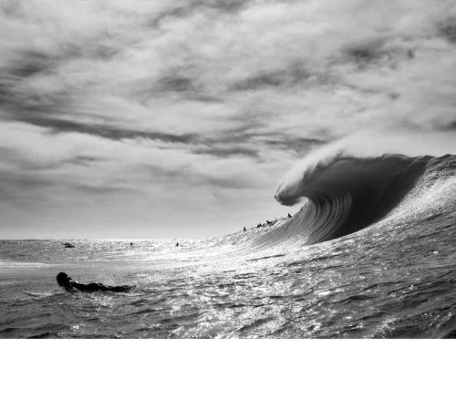 Swell: A Year of Waves (Ocean Coffee Table Book, Book About Surfing)