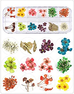 Goliton Nail Art Accessories Dried Flowers Colorful Life Nail Flower Stickers For DIY Crafts Nails Decorations Nail Salon ...