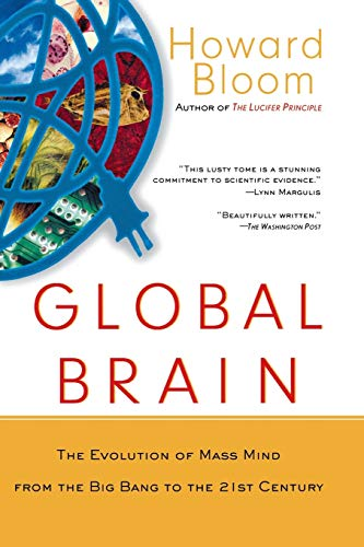 Global Brain: The Evolution of Mass Mind from the Big Bang to the 21st Century: The Evolution of the Mass Mind from the Big Bang to the 21st Century
