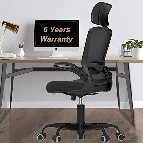 Mimoglad Ergonomic Office Chair, High Back Desk Chair with Adjustable Headrest and Lumbar Support, Swivel Task Chair Computer Chair Rock Function, and Quiet Wheels (Black)