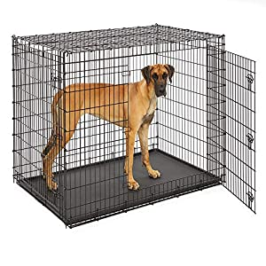 MidWest Homes for Pets XXL Giant Dog Crate | 54-Inch Long Ginormous Dog Crate Ideal for a Great Dane, Mastiff, St. Bernard & Other XXL Dog Breeds