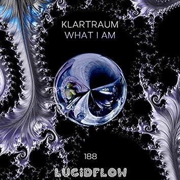 What I Am (Radio Edit)