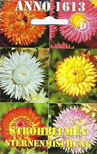 Thysanotusversand Strohblumen Sternenmischung Helichrysum 100 Samen
