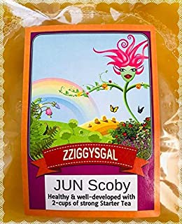 zziggysgal Jun Scoby, Includes 2 Cups Strong Starter Tea, 4 inches in Diameter