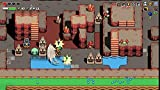 Immagine 1 cadence of hyrule crypt the