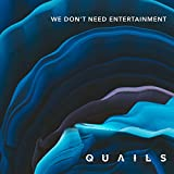 We Don't Need Entertainment (Tunnel Signs Remix)