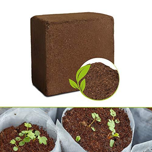 Kokoserde gepresst - Humusziegel für 70l Kokossubstrat - torffrei & ohne Dünger - Kokos Blumenerde Pflanzerde Anzuchterde Aussaaterde Gartenerde - Alternative zu Rindenmulch - Kokoshumus für Terrarium