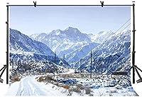 HD 10x7ft背景雪に覆われた寒い冬の写真撮影の背景写真写真の背景小道具スタジオ屋内装飾LYXC2310