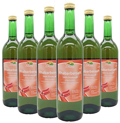 Bleichhof Rhabarbersaft - 100% Direktsaft, naturrein und vegan, OHNE Zuckerzusatz, 6er Pack (6x 0,72l)