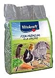 VITAKRAFT Zanahoria heno para Animales pequeños 1kg
