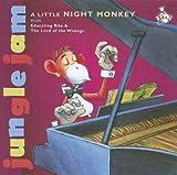 A Little Night Monkey