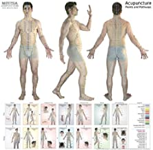 Acupuncture Points and Pathways