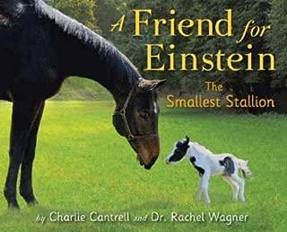A Friend for Einstein, the Smallest Stallion