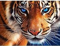 大人の子供のためのDIY5Dダイヤモンド絵画キットダイヤモンド刺繍タイガーダイヤモンド動物モザイクラウンドドリルギフト壁の装飾40X50Cm(15.5X19.5インチ)