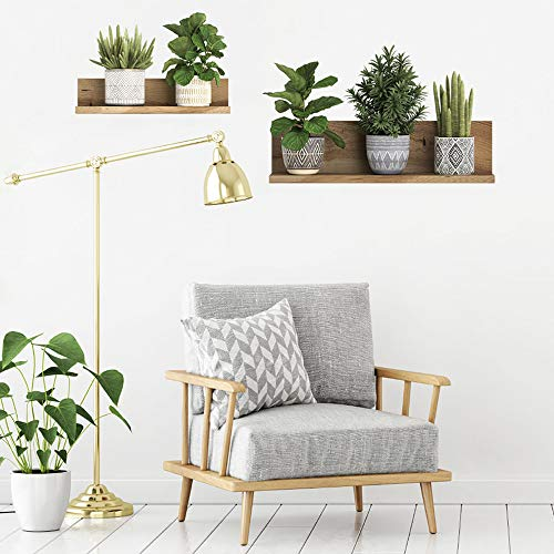 Green Potted Plant Wall Decal, MOTASOM Removable PVC Bonsai Wall Stickers, Creative Mural Decoration for Decor Girls Boys Kids Nursery Baby Home Living Room Bedroom Kitchen (22.4 x 21.2 inch)