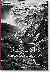 Genesis de Lelia Salgado