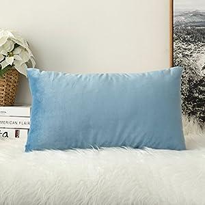MIULEE Terciopelo Funda de Cojine Funda de Almohada del Sofá Throw Cojín Decoración Almohada Caso de la Cubierta Decorativo para Sala de Estar 30x 50cm 12 x 20 Pulgadas 1 Pieza Agua Azul