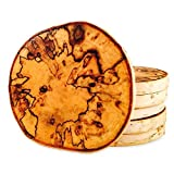 Very Rare Marble Birch Tree Coasters with Bark (4-Pack)