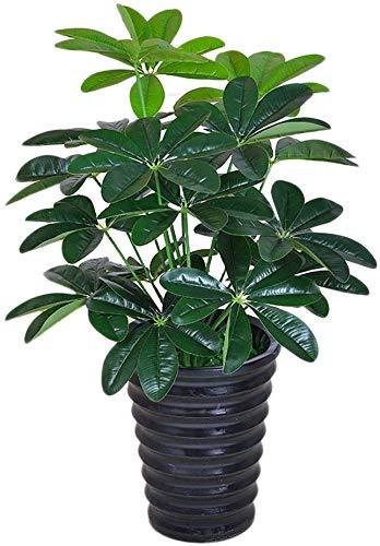 Miwaimao Kunstplanten 65 cm Latex Kunstmatige Evergreen Pachira Plant Boom In Bruiloft Thuis Strand Kantoordecoratie Groene Tak Nep Gebladerte Kunstmatige Flora (Kleur : C)