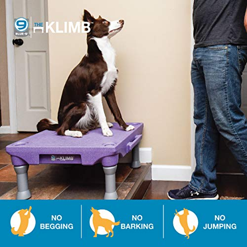 Blue-9 Klimb Dog Training Platform and Agility System, Durable and Portable for Indoor or Outdoor Use, Black