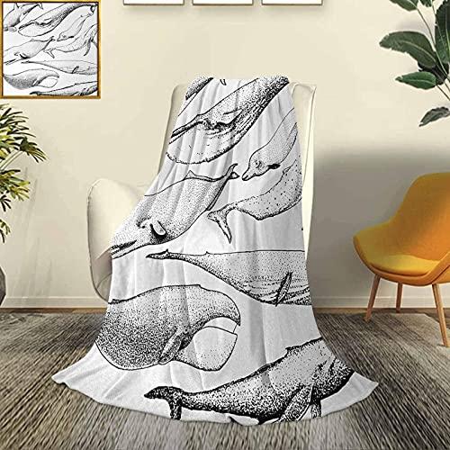 Ballena Moderno y Elegante para Todas Las Estaciones Colcha futón Ballenas Blancas y Negras Dibujadas a Mano de un Solo Tipo Imagen artística pequeña y Grande Sofá Cama de Viaje Duradero So