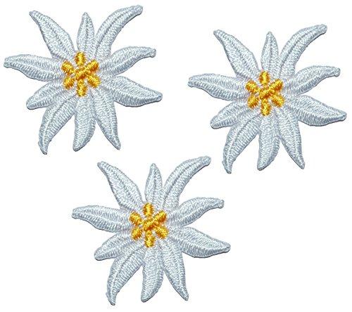 3 TLG. Set: kleine Blüten Edelweiss - 3,5 cm * 3 cm Bügelbild - Aufnäher Applikation - weiße / beige / Ivory Edelweiß - Alpenblume - Blumen Blüten für Trachte..