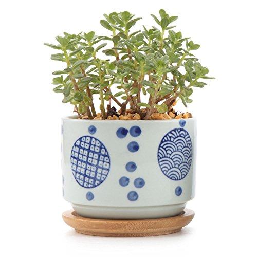 STARKWALL T4u Cerámica Japonesa Estilo Serie Suculenta Plantador Olla Cactus Maceta Bonsai Pot Flower Pot Contenedor Jardín Decoración Type02