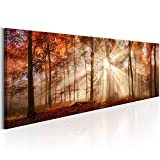 artgeist Glass Wall Art Acrylic Print 53.2'x17.7' Image Picture Photo Painting Artwork 1 pcs Home Decor Forest Landscape c-B-0187-k-a