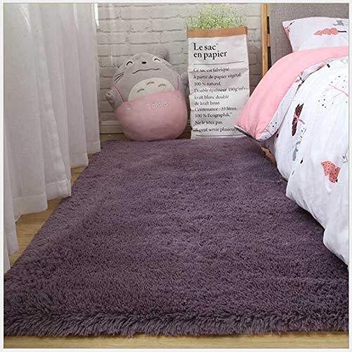 ZWWZ Shaggy Teppich seidig, plüscht, massivfarbig, modern entkräftig; COR, Plüsch, für Wohnzimmer, Sofa, Spaziergang, Schlafzimmer (Couleur: Grau lila, Schallplatte: 60x160 cm) HAIKE
