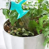 KIRALOVE Aspersor de Maceta - Idea Original de Regalo - Sistema de riego de Plantas - Boquilla - Adecuado para Botella de jardín de PVC - regadera multipropósito Bugs Bunny