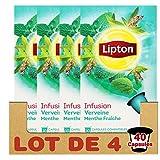 Lipton Infusion Verveine Menthe Fraiche 10 Capsules ( LOT DE 4 )