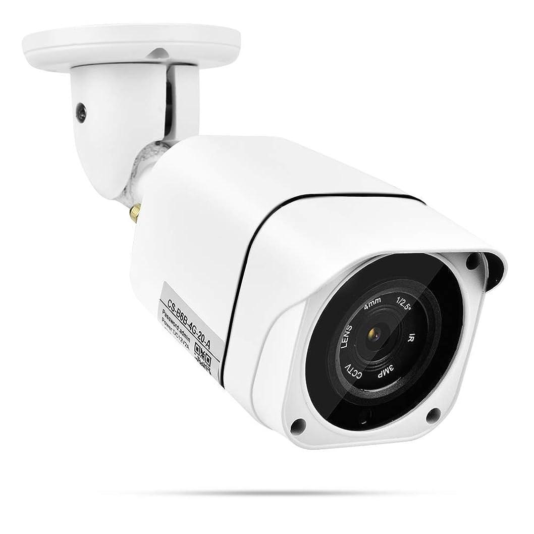 気絶させる後ろ、背後、背面(部おばさん1080 P屋外防犯カメラ、監視システム防水用Onvifカメラ、ナイトビジョン、アンテナ付きモーション検知カメラ(US プラグ)